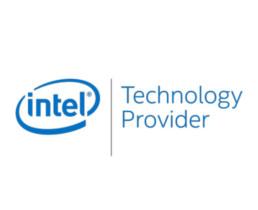 Intel partners